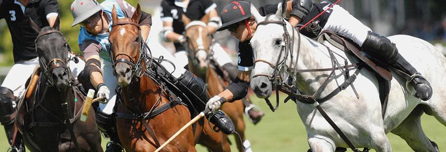 Choisir votre matériel d'équitation