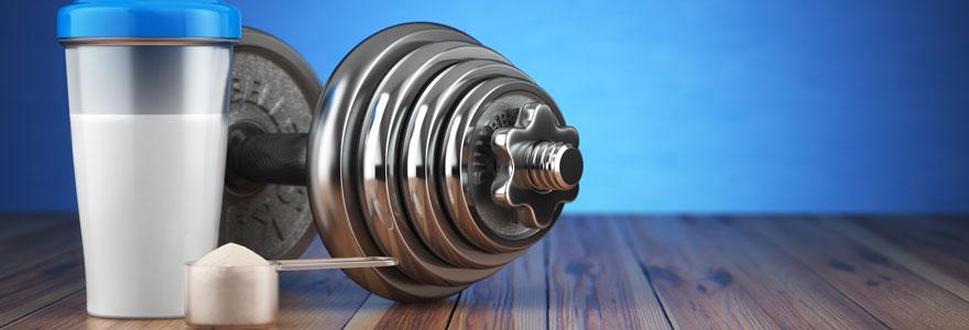 Protéine pour les sportifs